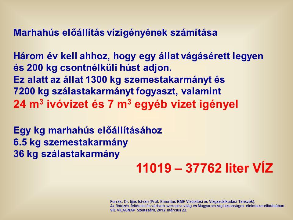 11019 – 37762 liter VÍZ 24 m3 ivóvizet és 7 m3 egyéb vizet igényel