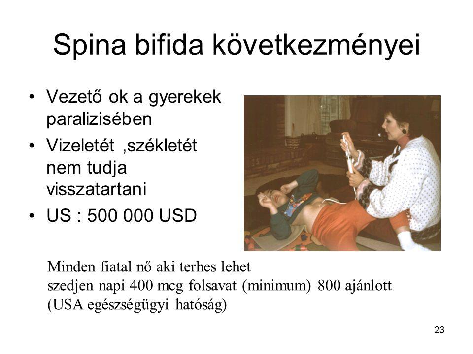 Spina bifida következményei