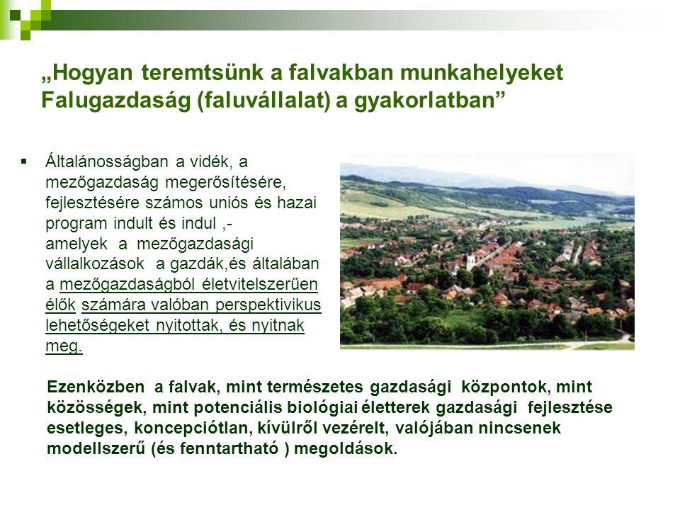 """""""Hogyan teremtsünk a falvakban munkahelyeket Falugazdaság (faluvállalat) a gyakorlatban"""