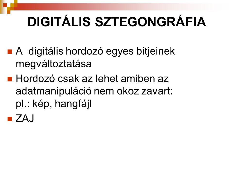 DIGITÁLIS SZTEGONGRÁFIA