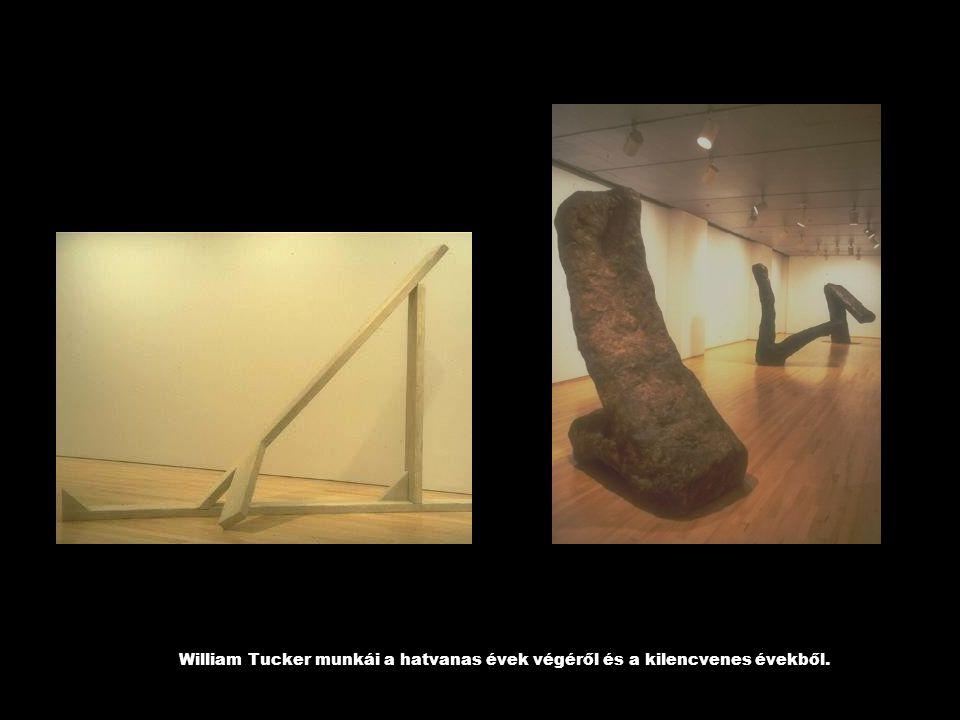 William Tucker munkái a hatvanas évek végéről és a kilencvenes évekből.