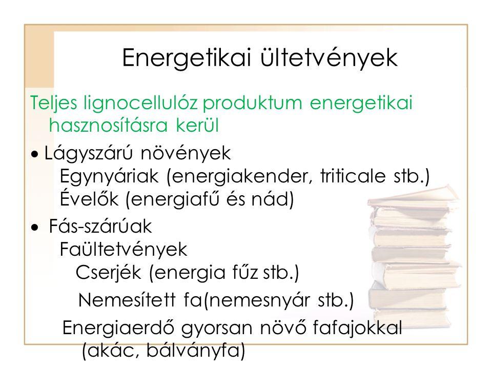 Energetikai ültetvények