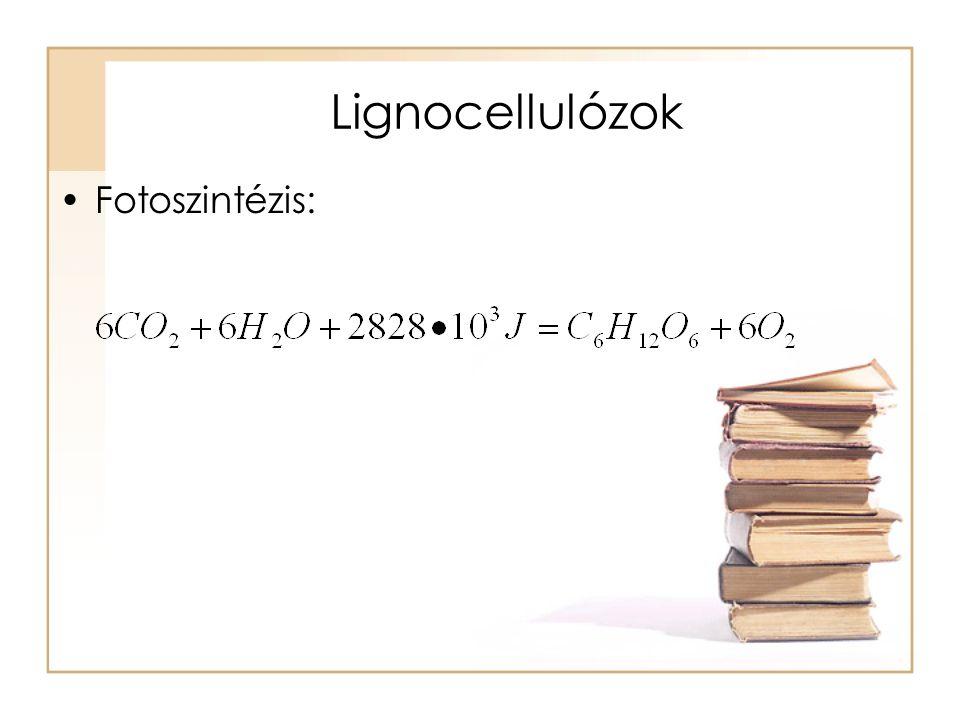 Lignocellulózok Fotoszintézis: