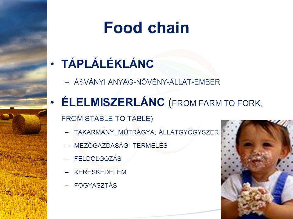 Food chain TÁPLÁLÉKLÁNC