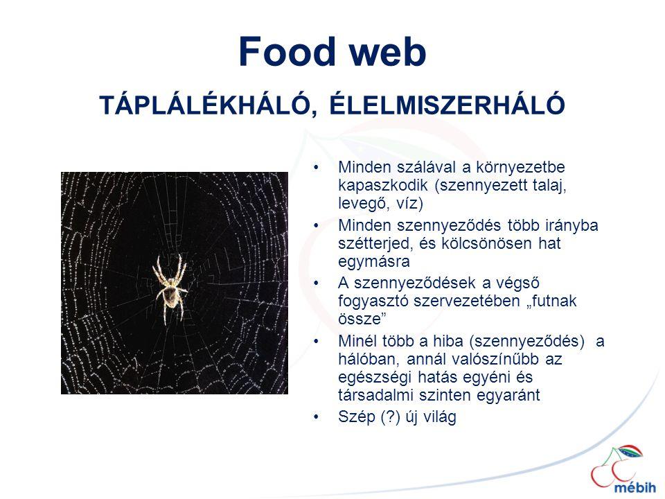 Food web TÁPLÁLÉKHÁLÓ, ÉLELMISZERHÁLÓ