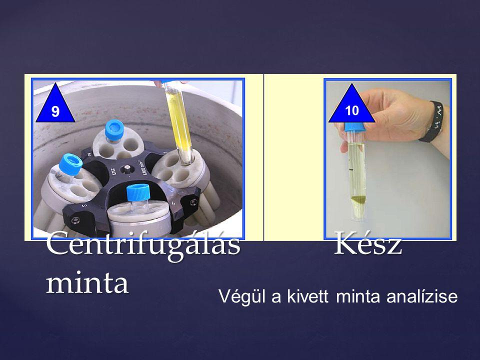 Centrifugálás Kész minta