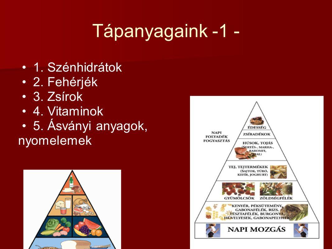 Tápanyagaink -1 - 1. Szénhidrátok 2. Fehérjék 3. Zsírok 4. Vitaminok