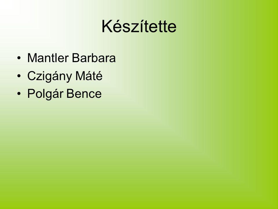 Készítette Mantler Barbara Czigány Máté Polgár Bence