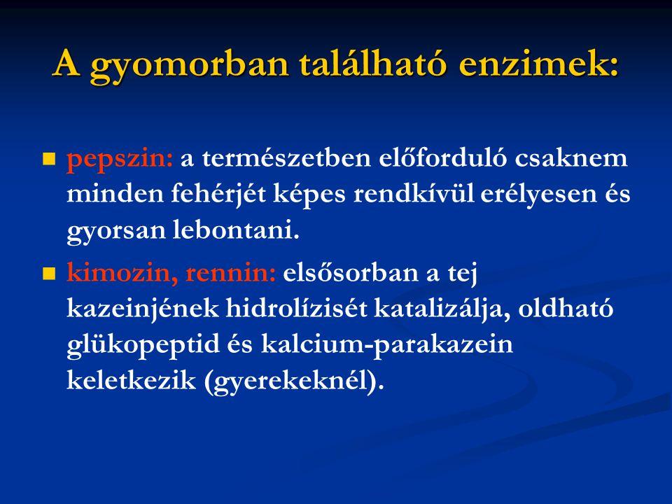 A gyomorban található enzimek: