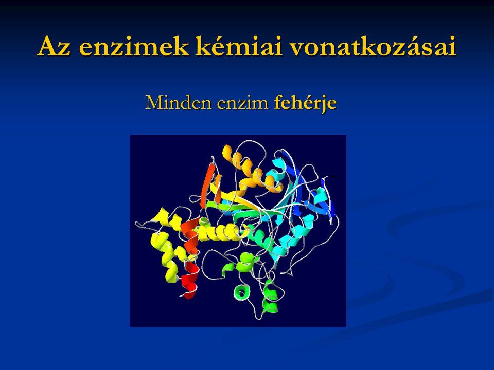 Az enzimek kémiai vonatkozásai