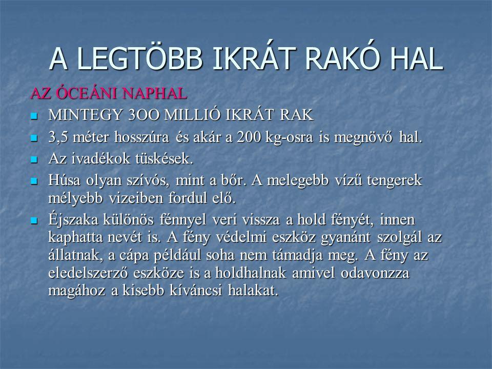 A LEGTÖBB IKRÁT RAKÓ HAL