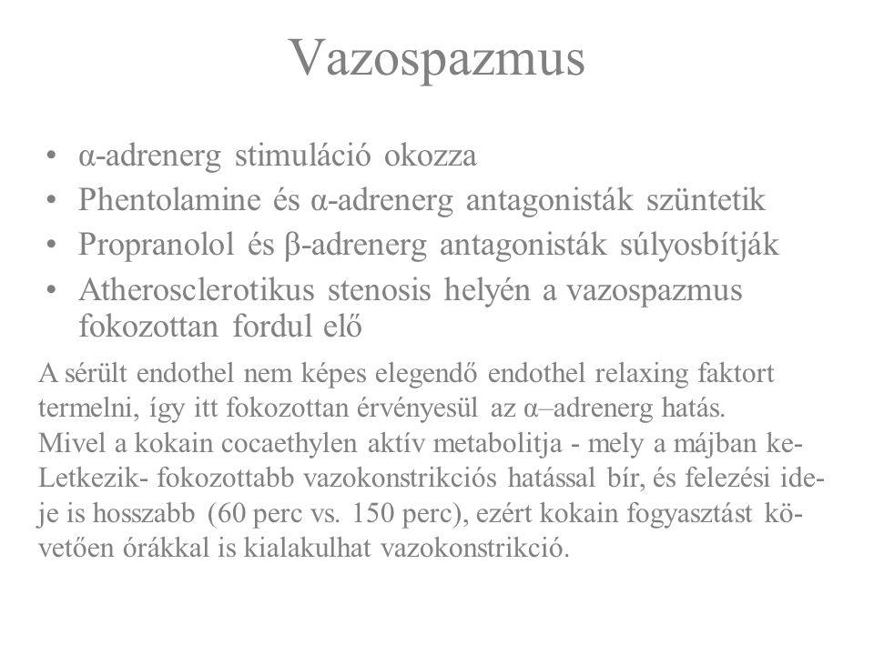 Vazospazmus α-adrenerg stimuláció okozza