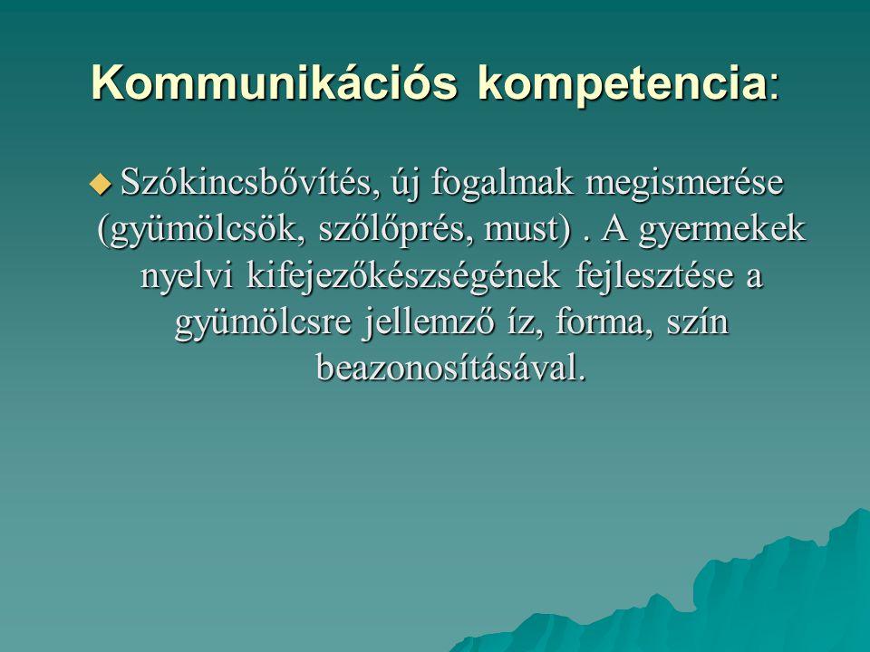 Kommunikációs kompetencia: