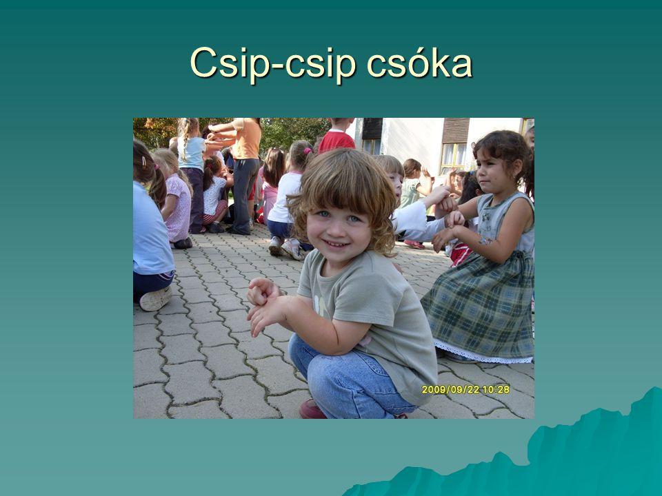 Csip-csip csóka