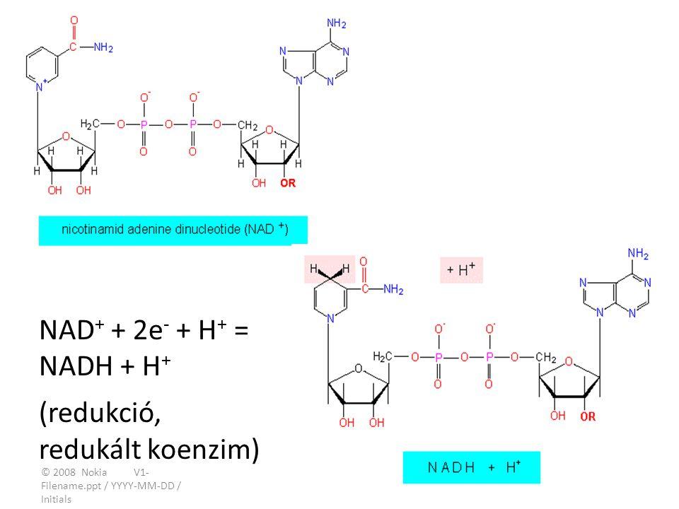 NAD+ + 2e- + H+ = NADH + H+ (redukció, redukált koenzim)