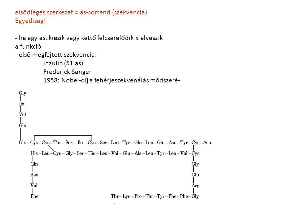 elsődleges szerkezet = as-sorrend (szekvencia) Egyediség!