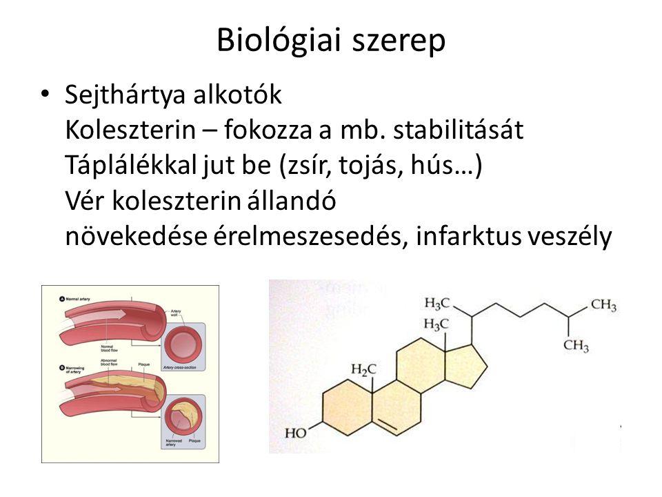Biológiai szerep