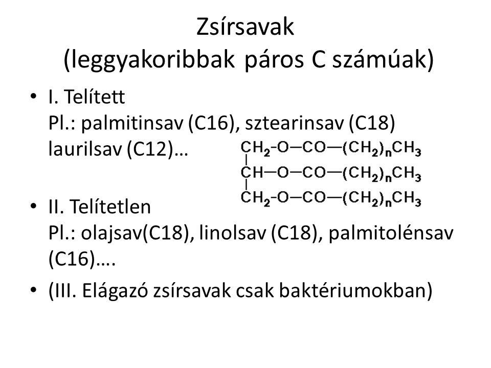 Zsírsavak (leggyakoribbak páros C számúak)