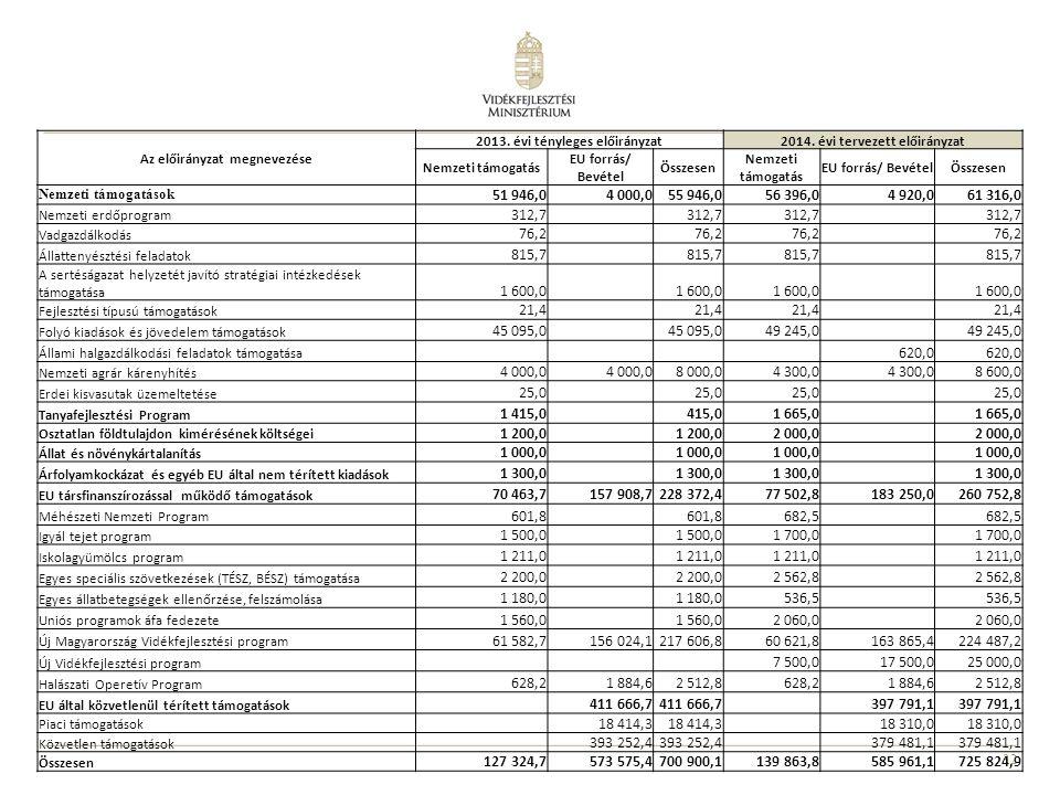 Az előirányzat megnevezése 2013. évi tényleges előirányzat