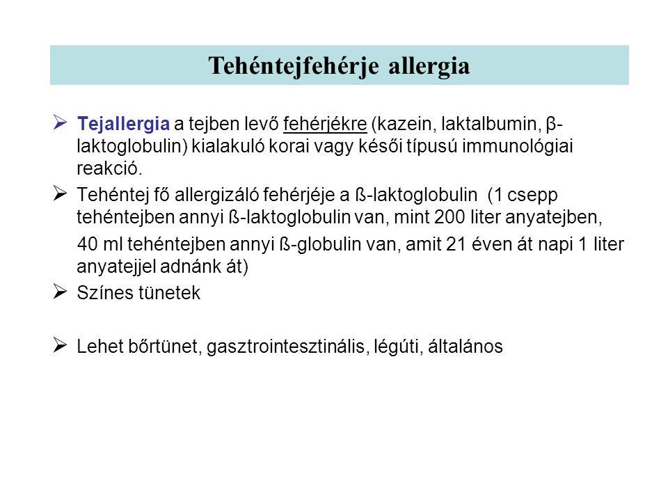 Tehéntejfehérje allergia