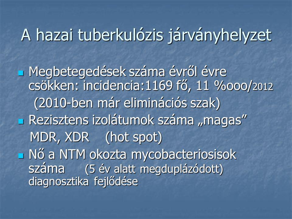 A hazai tuberkulózis járványhelyzet