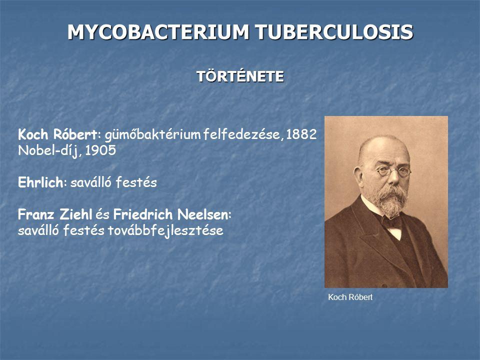 MYCOBACTERIUM TUBERCULOSIS TÖRTÉNETE