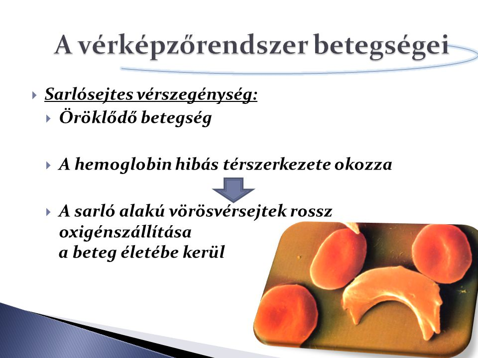 A vérképzőrendszer betegségei