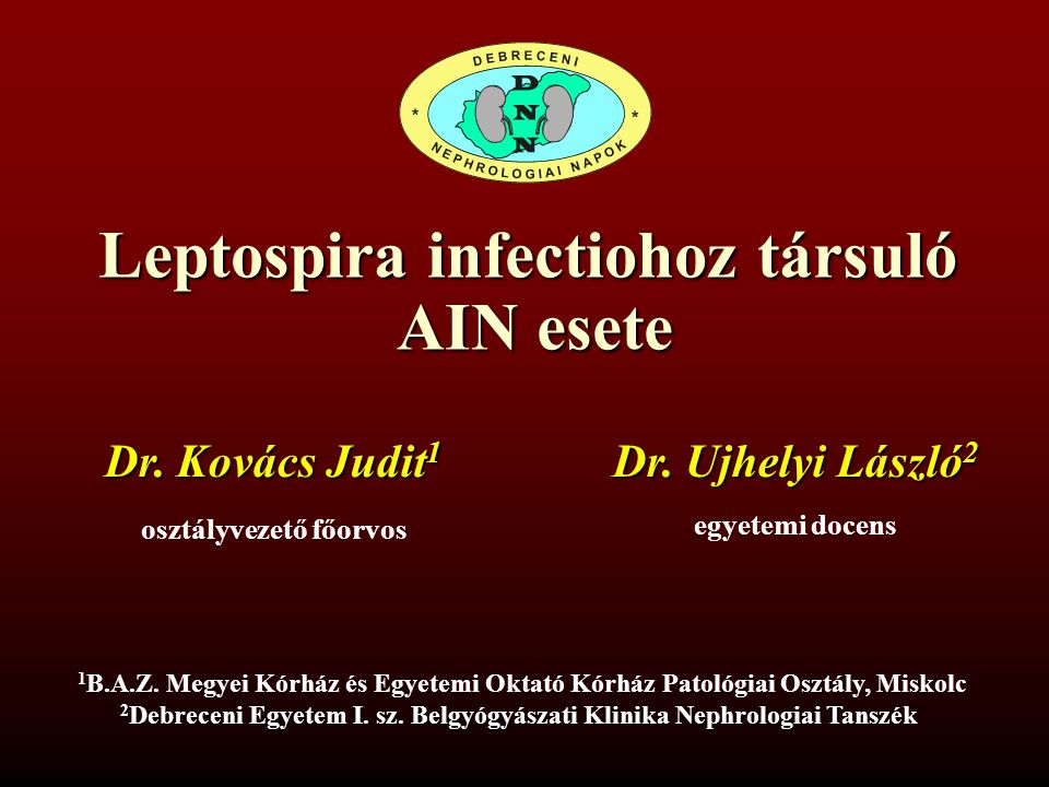 Leptospira infectiohoz társuló AIN esete