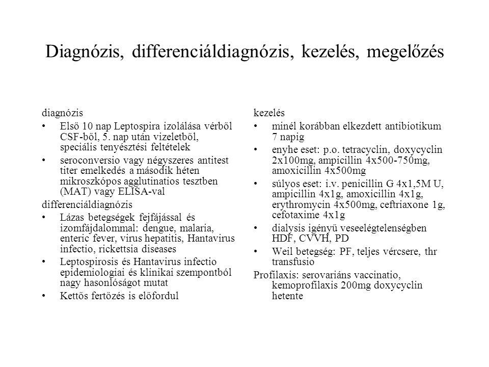Diagnózis, differenciáldiagnózis, kezelés, megelőzés