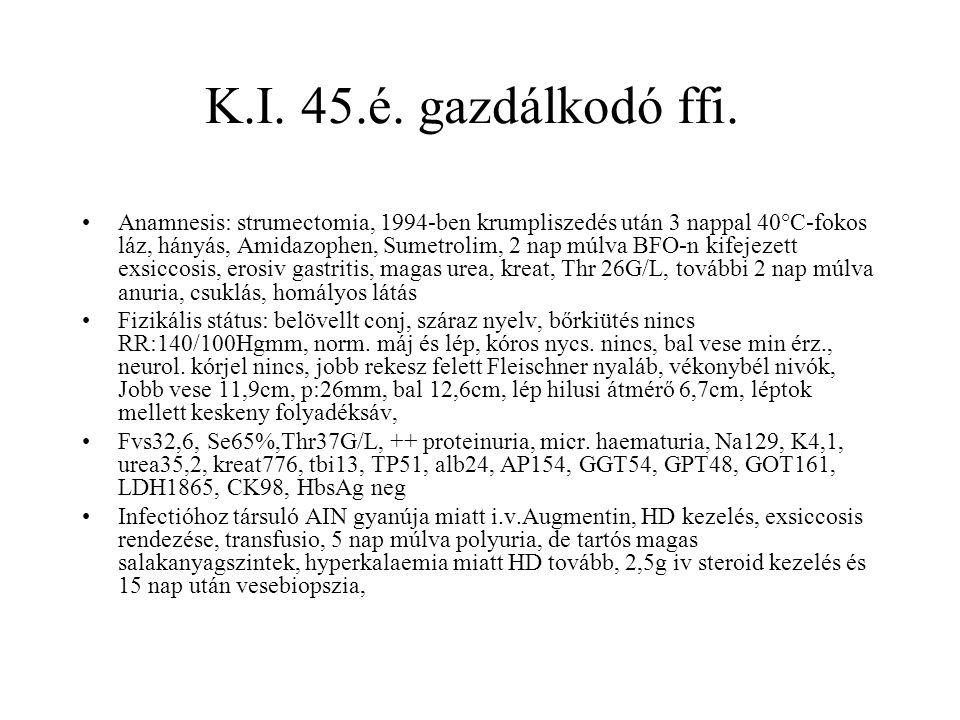 K.I. 45.é. gazdálkodó ffi.