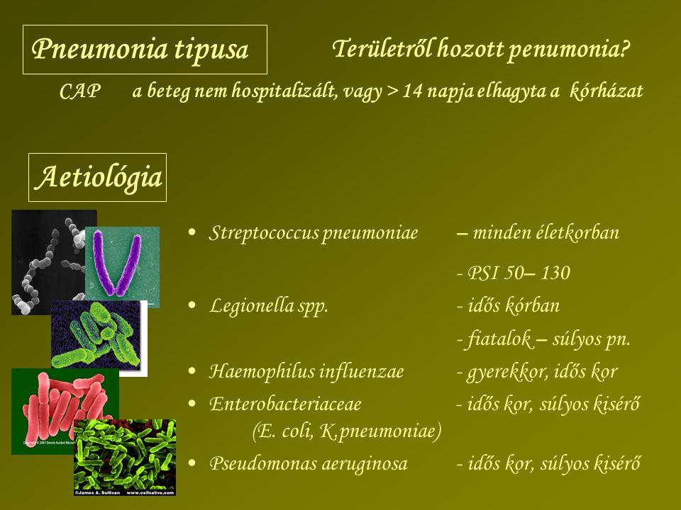 Pneumonia tipus a Aetiológia Területről hozott penumonia