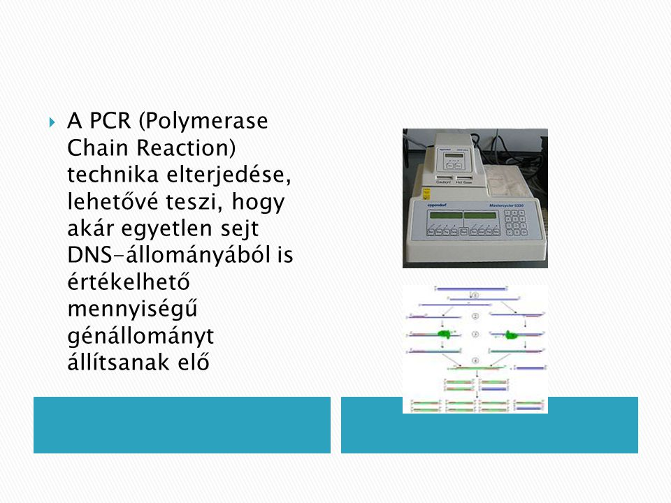 A PCR (Polymerase Chain Reaction) technika elterjedése, lehetővé teszi, hogy akár egyetlen sejt DNS-állományából is értékelhető mennyiségű génállományt állítsanak elő