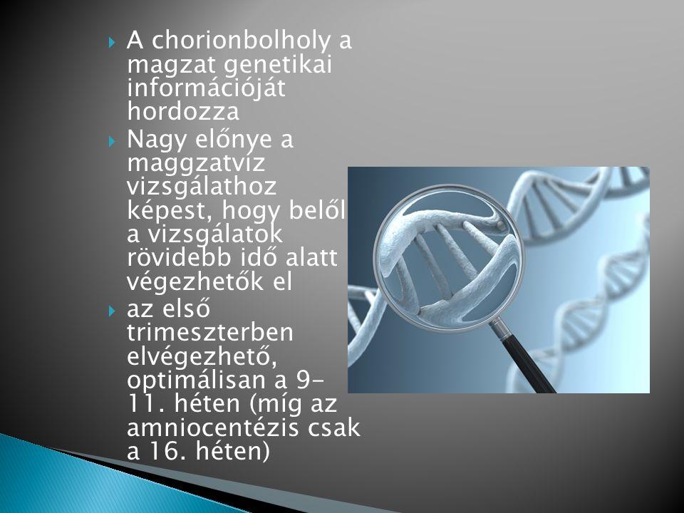 A chorionbolholy a magzat genetikai információját hordozza