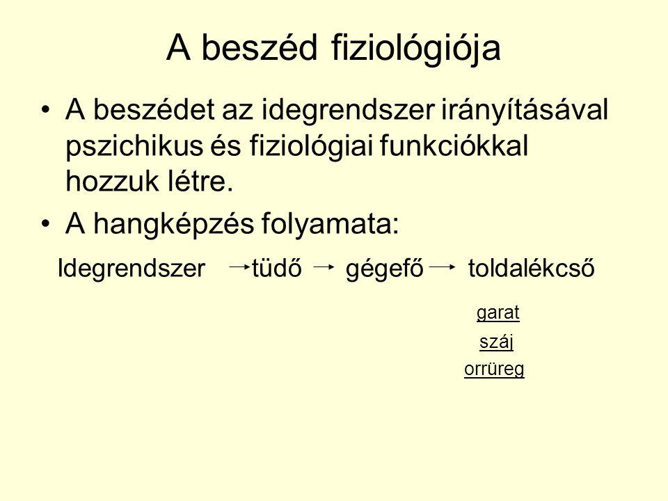 A beszéd fiziológiója A beszédet az idegrendszer irányításával pszichikus és fiziológiai funkciókkal hozzuk létre.