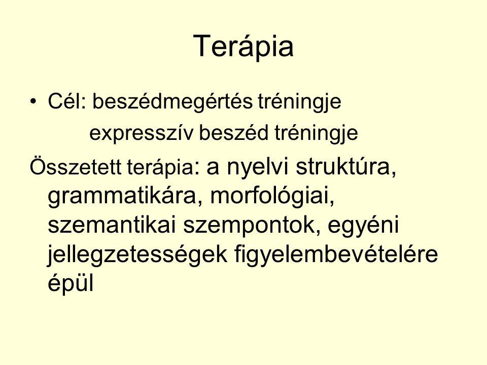 Terápia Cél: beszédmegértés tréningje expresszív beszéd tréningje