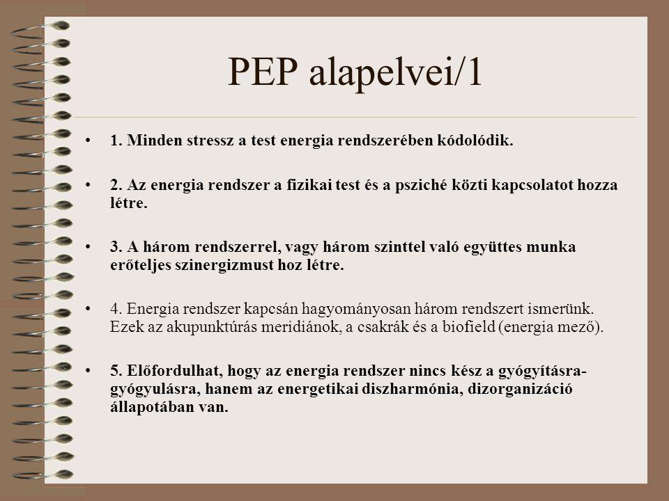 PEP alapelvei/1 1. Minden stressz a test energia rendszerében kódolódik.