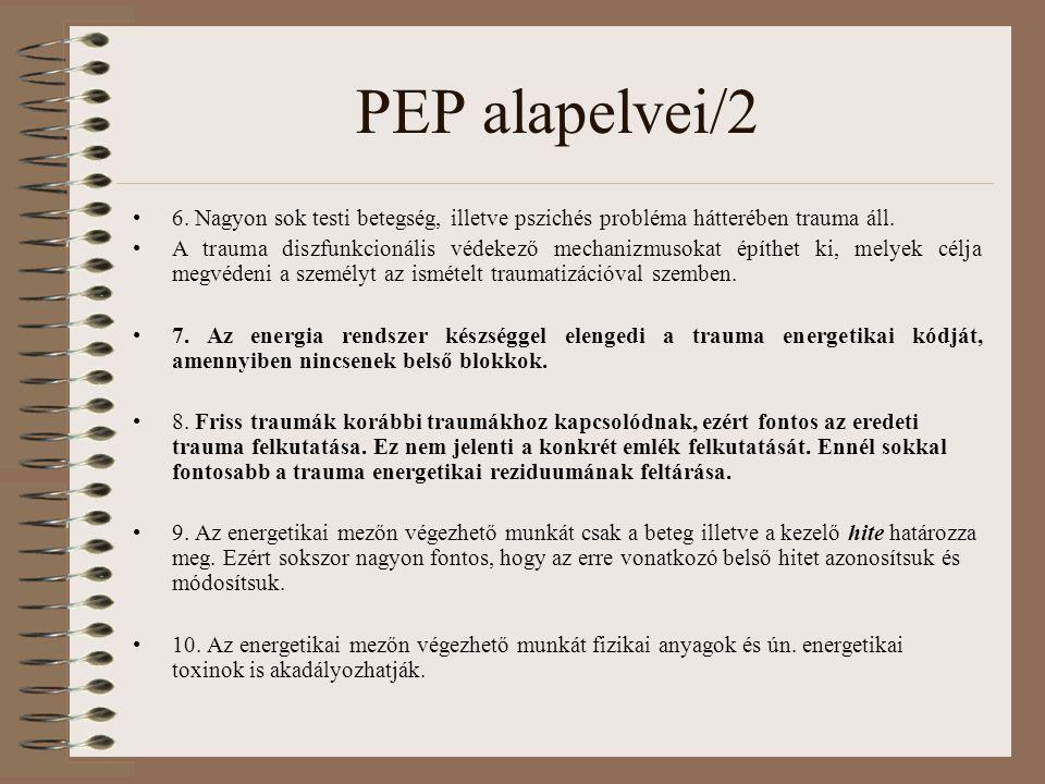 PEP alapelvei/2 6. Nagyon sok testi betegség, illetve pszichés probléma hátterében trauma áll.