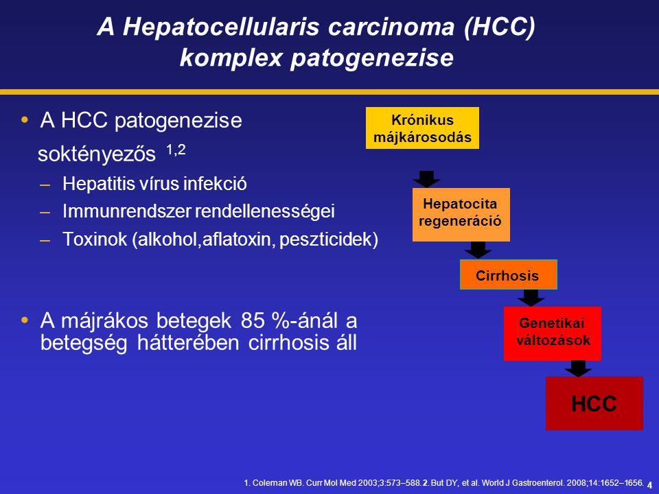 A Hepatocellularis carcinoma (HCC) komplex patogenezise