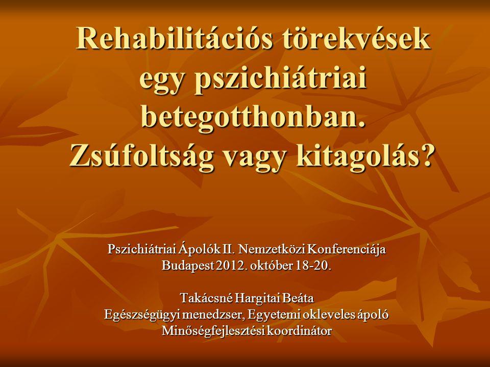 Rehabilitációs törekvések egy pszichiátriai betegotthonban