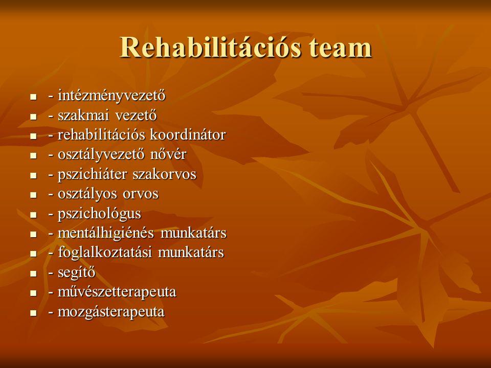 Rehabilitációs team - intézményvezető - szakmai vezető