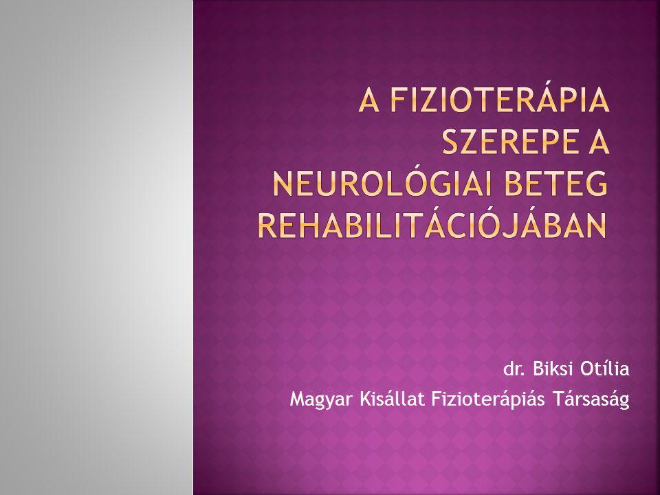 A fizioterápia szerepe a neurológiai beteg rehabilitációjában