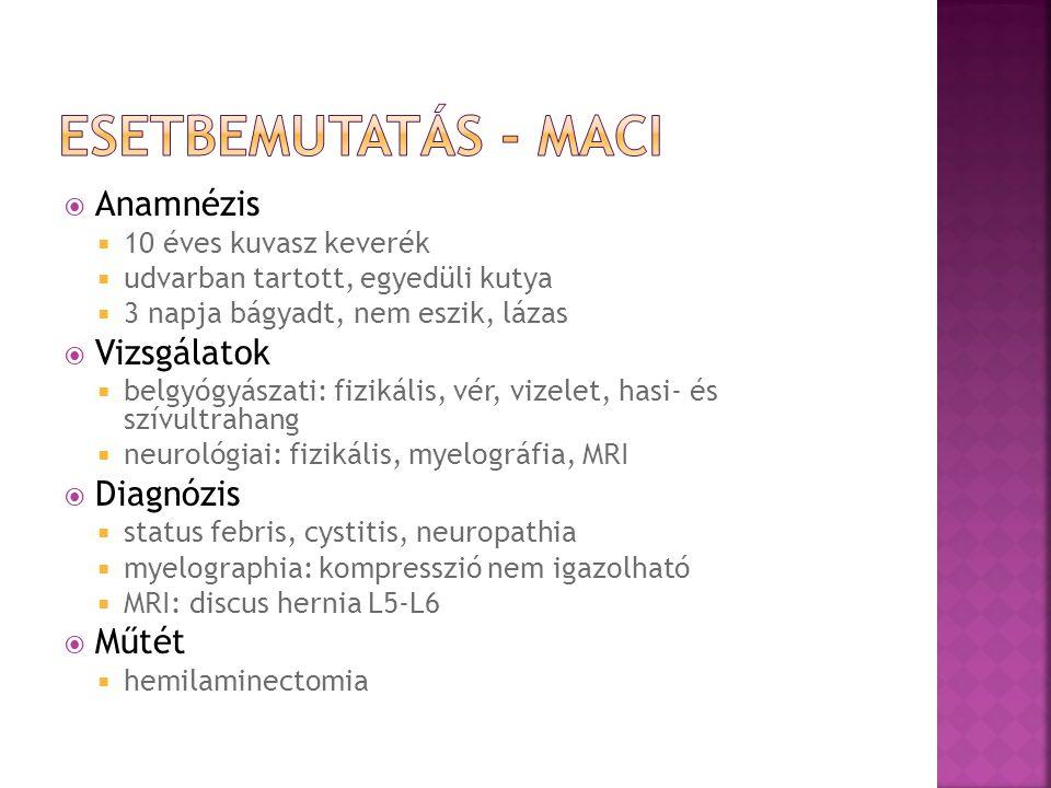 Esetbemutatás - Maci Anamnézis Vizsgálatok Diagnózis Műtét