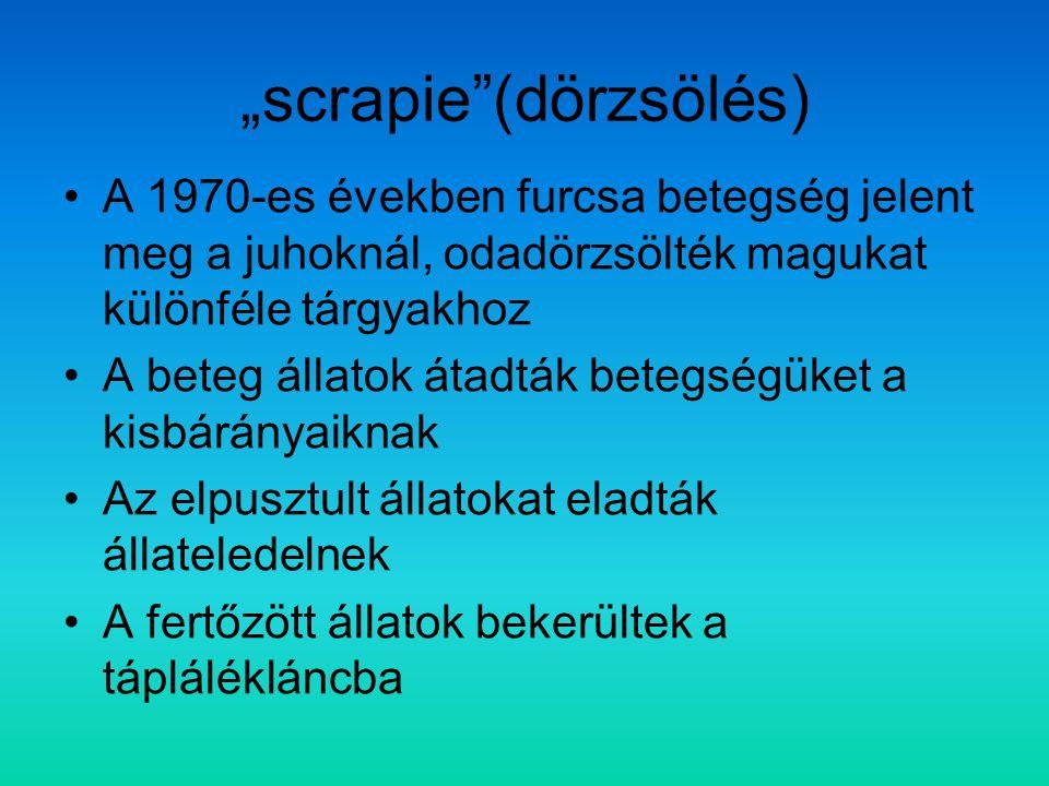 """scrapie (dörzsölés)"