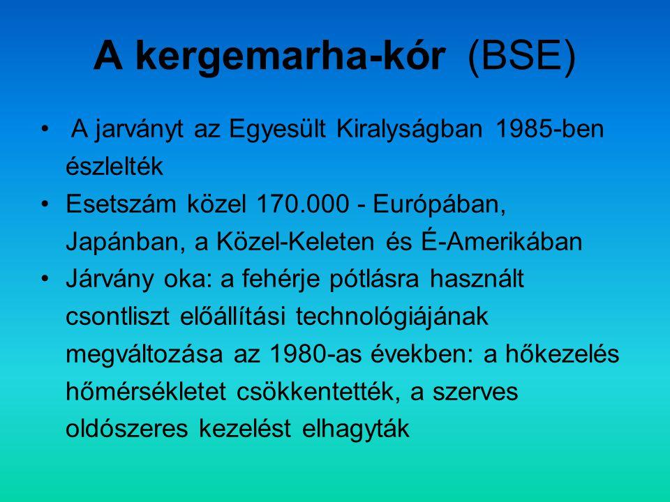 A kergemarha-kór (BSE)