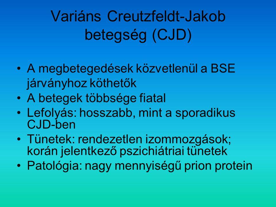 Variáns Creutzfeldt-Jakob betegség (CJD)