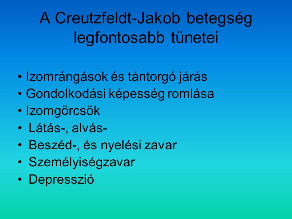 A Creutzfeldt-Jakob betegség legfontosabb tünetei