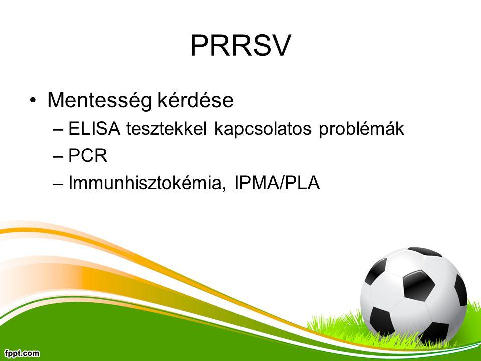 PRRSV Mentesség kérdése ELISA tesztekkel kapcsolatos problémák PCR