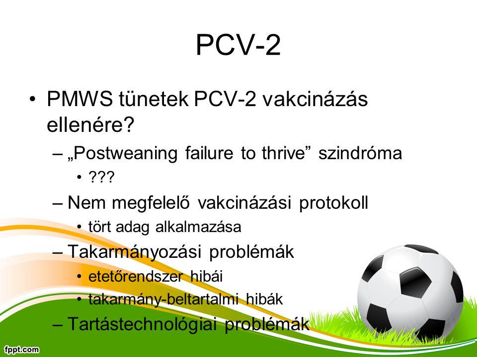 PCV-2 PMWS tünetek PCV-2 vakcinázás ellenére