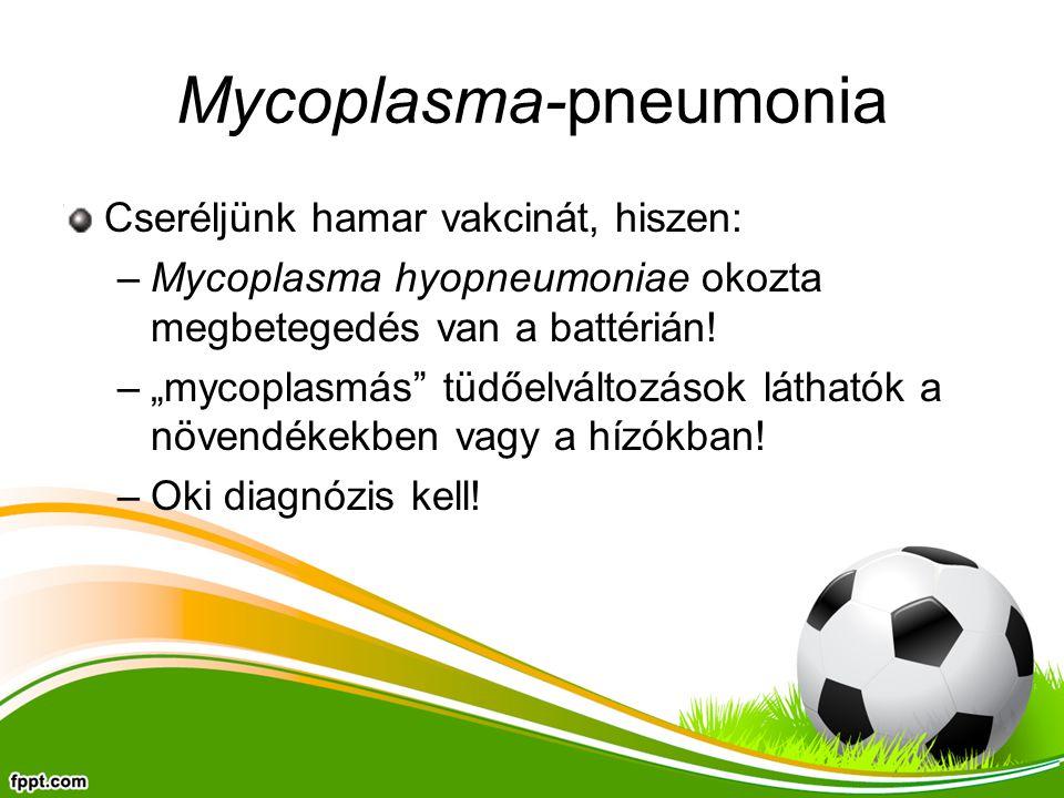 Mycoplasma-pneumonia