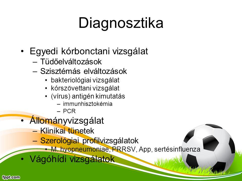 Diagnosztika Egyedi kórbonctani vizsgálat Állományvizsgálat
